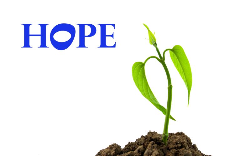 Hope - image 3